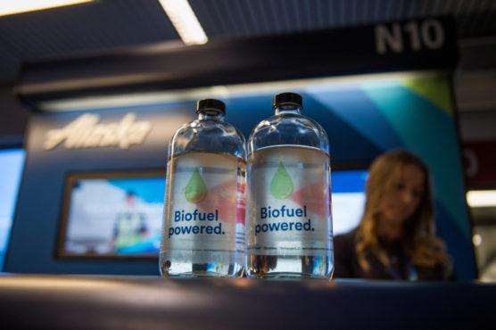cumbustivel-florestao-biocombustivel-alaska-airlines-inova-social