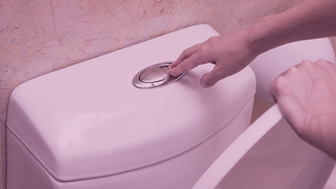 Piipee: Empreendedores brasileiros criam sistema que economiza água do vaso sanitário