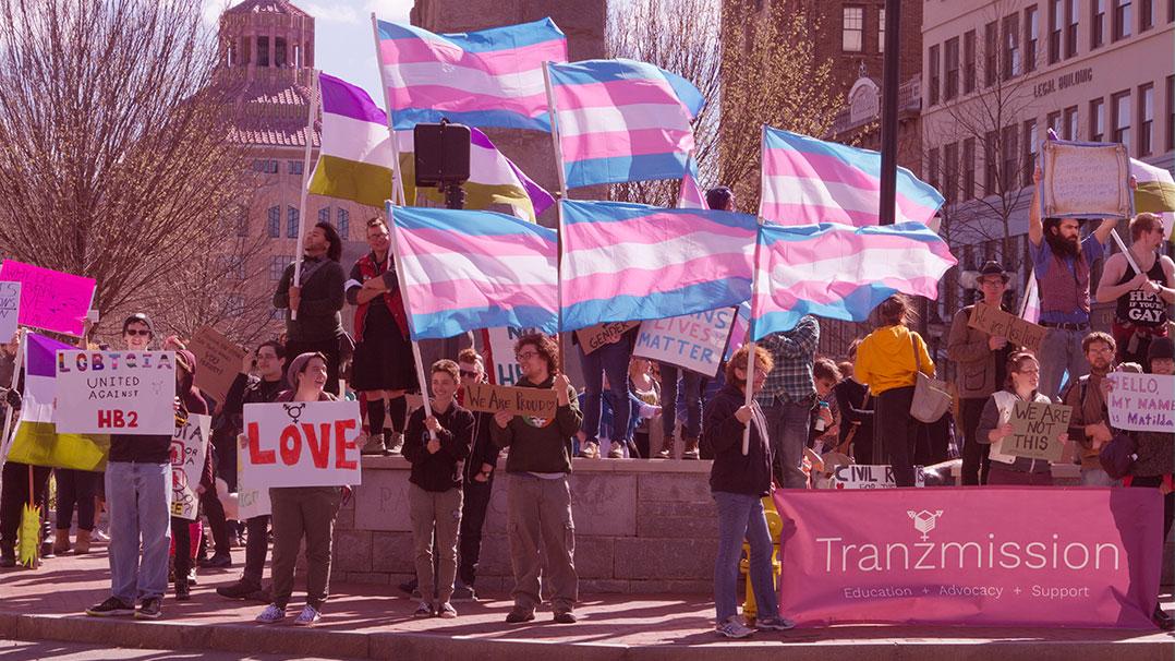 Transexualidade: Burocracias, saúde e transfobia