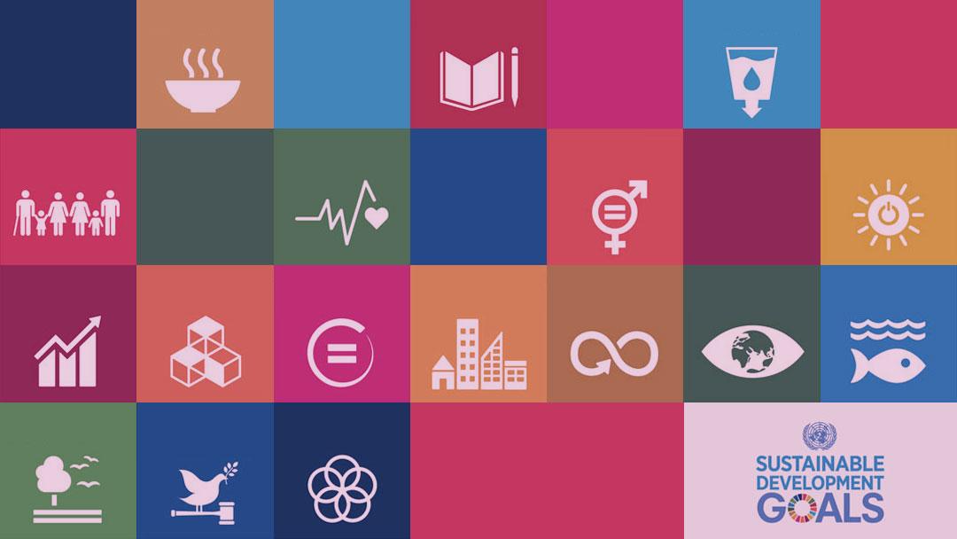 UN Volunteers: A plataforma de voluntários digitais da ONU