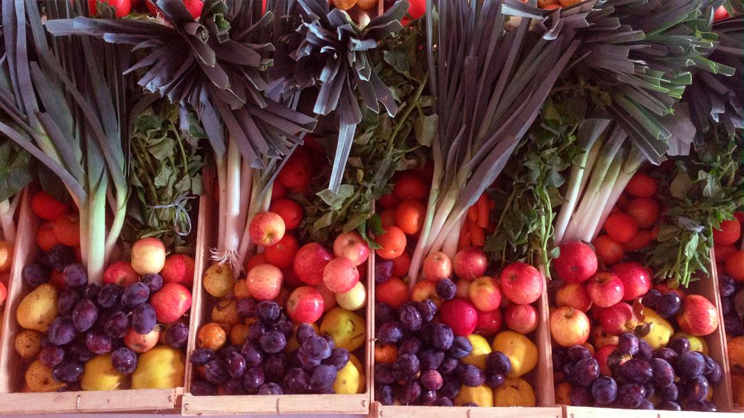 fruta-feia-portugal-inova-social