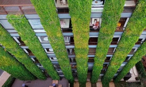 beneficios-jardins-verticais-cidades-bogota-colombia-inova-social-01