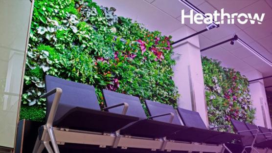 beneficios-jardins-verticais-cidades-bogota-colombia-inova-social-03