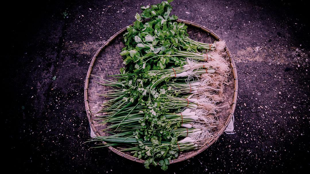 bota-na-mesa-projeto-agricultura-familiar-cidade-inovasocial