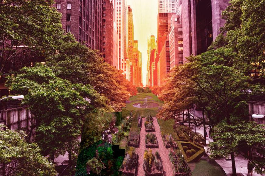 loop-nyc-edg-inovacao-urbana-inova-social-destaque