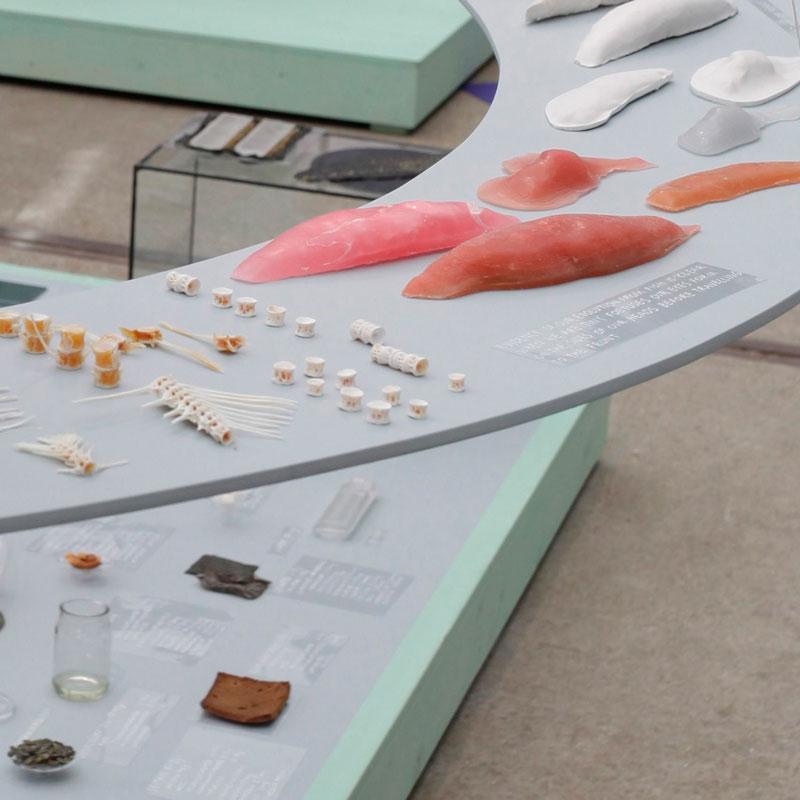 alimentos-futuro-dutch-design-week-06