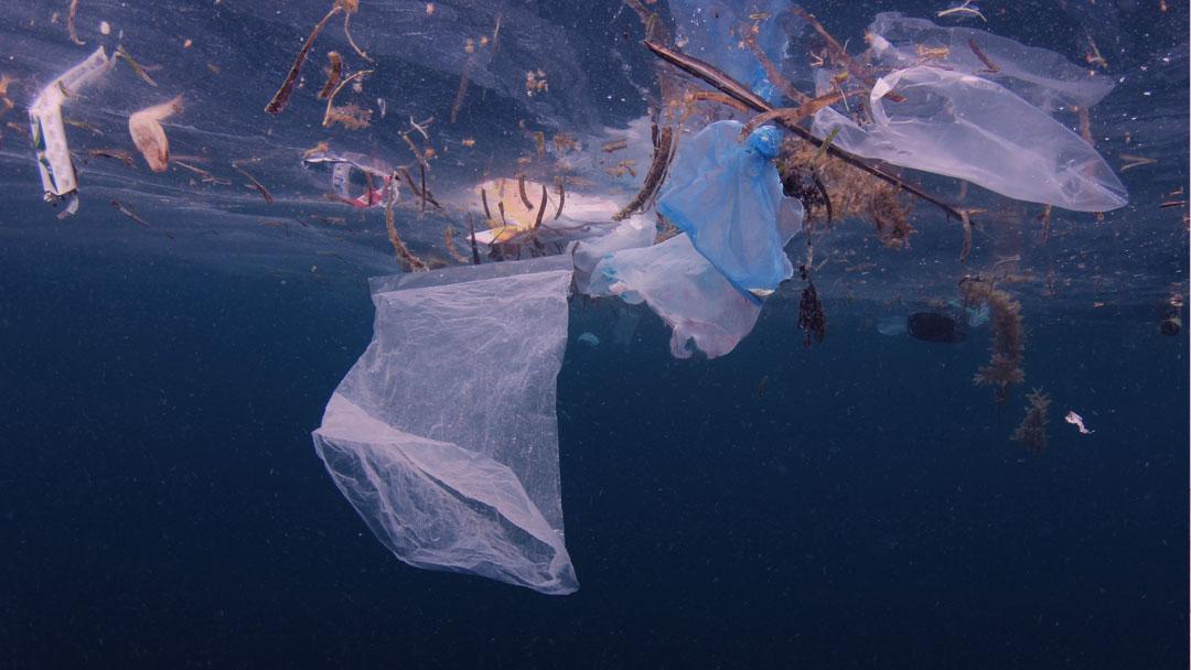 União Europeia quer acabar com plásticos não recicláveis até 2030