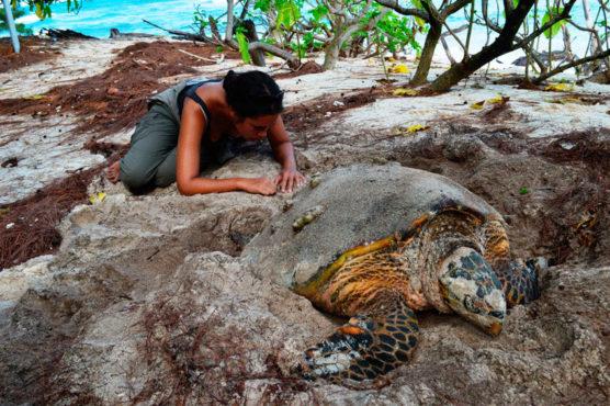 conservation-boot-camp-ilha-island-cousin-seychelles-inovasocial-02