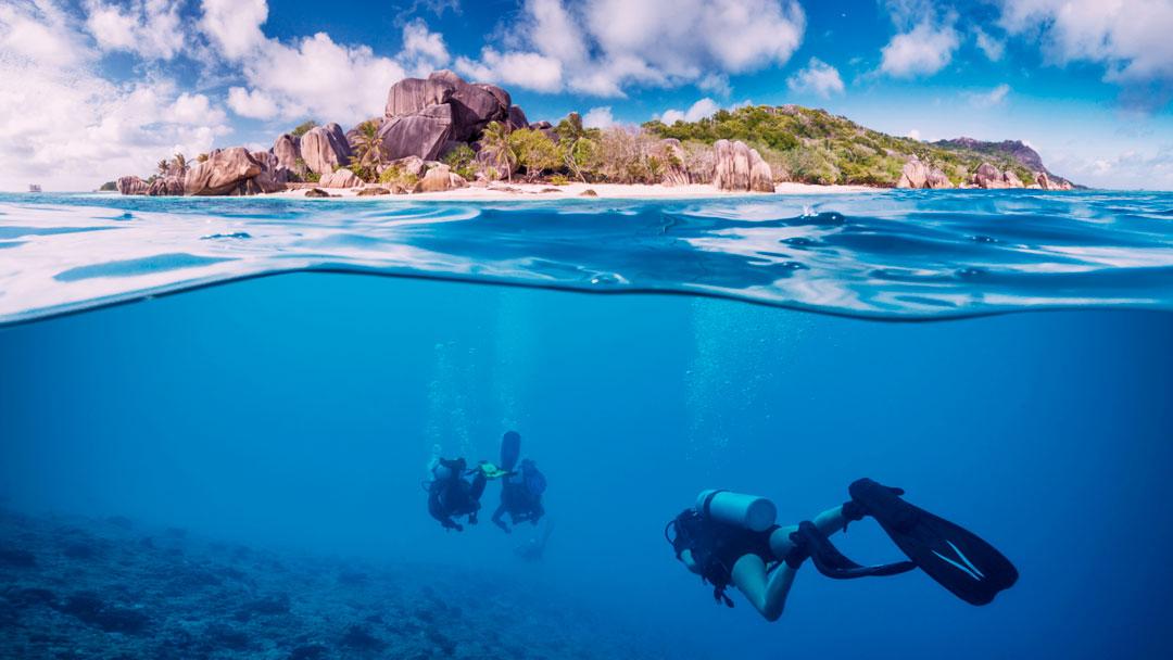 Acampamento nas Ilhas Seychelles ensina na prática sobre conservação da natureza