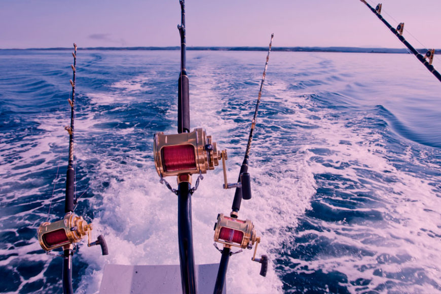 maldivas-pesca-ods-14-inovasocial-destaque