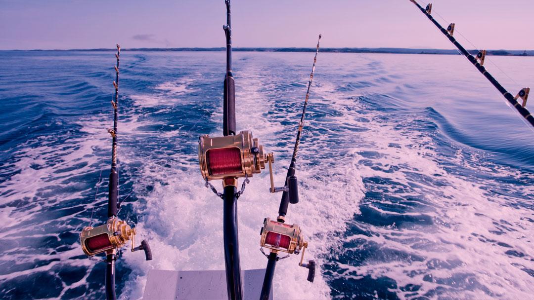 ODS 14: Como as práticas pesqueiras nas Maldivas podem servir como exemplo para o mundo todo