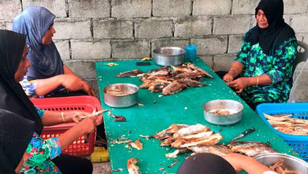 ods-14-pole-line-fishing-maldivas-inovasocial-03