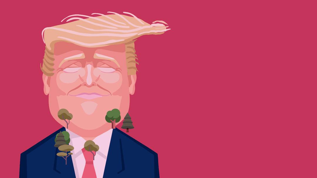 Treespond: Árvores plantadas para cada vez que Donald Trump fala sobre a mudança climática