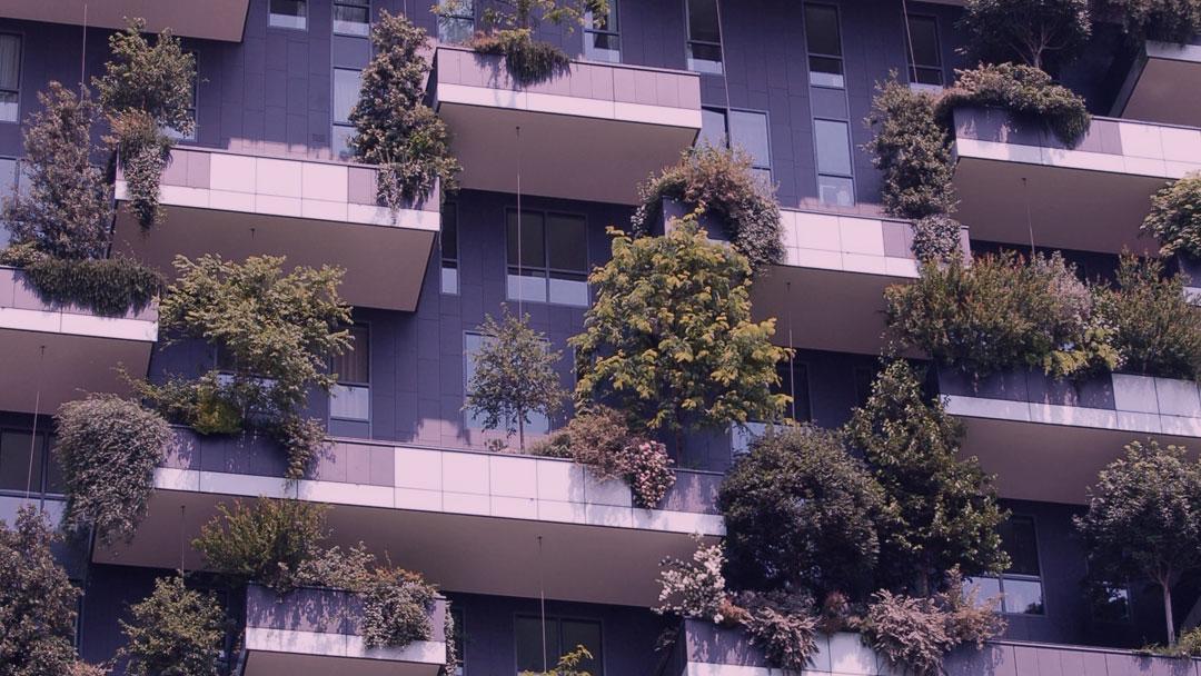 Meio ambiente é essencial no desenvolvimento de cidades inteligentes, afirma IESE