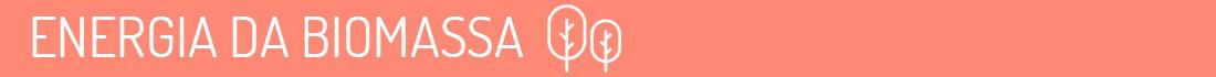 energia-biomassa-guia-tipos-energia-inovasocial