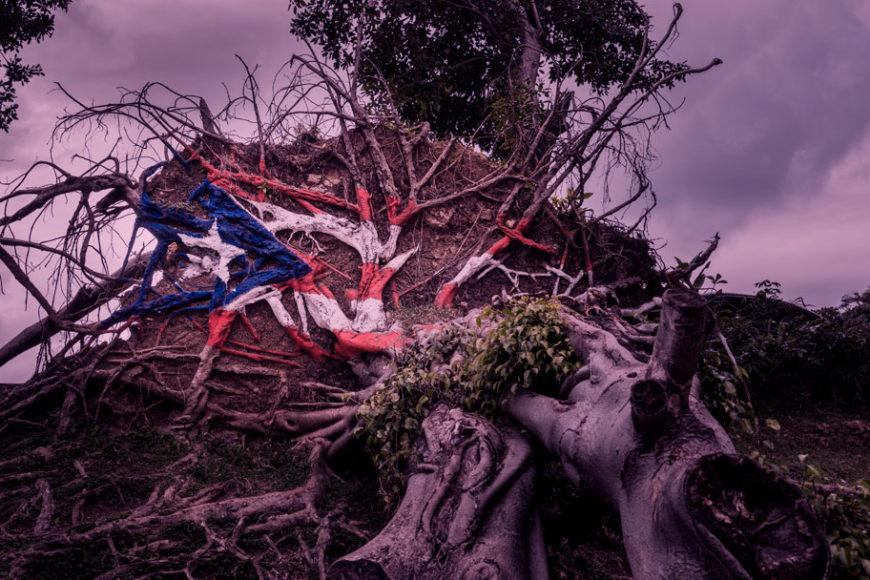 casas-porto-rico-tempestades-furacoes-inovacao-social-inovasocial-destaque
