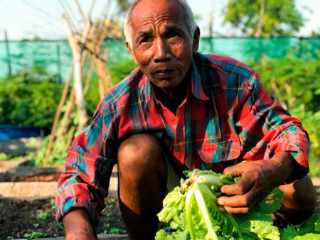 camboja-reflorestament-chuva-inovacao-social-inovasocial-01