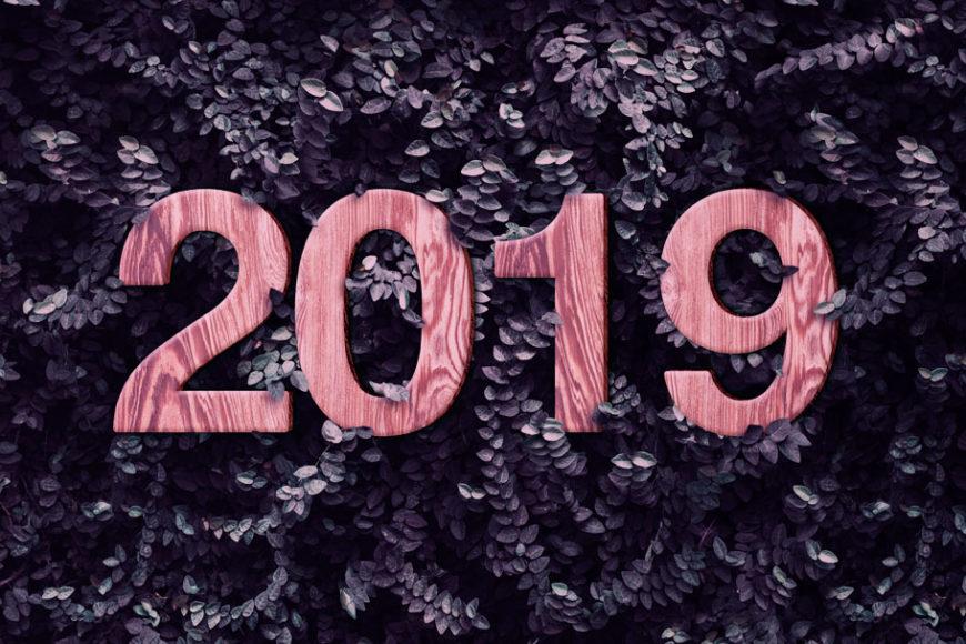 habitos-sunstentaveis-2019-inovasocial-destaque