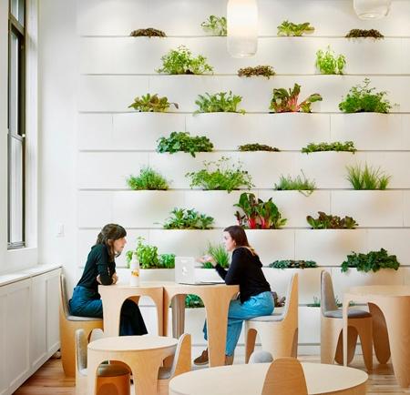 wegrow-escola-futuro-we-work-inovasocial-inovacao-social-08