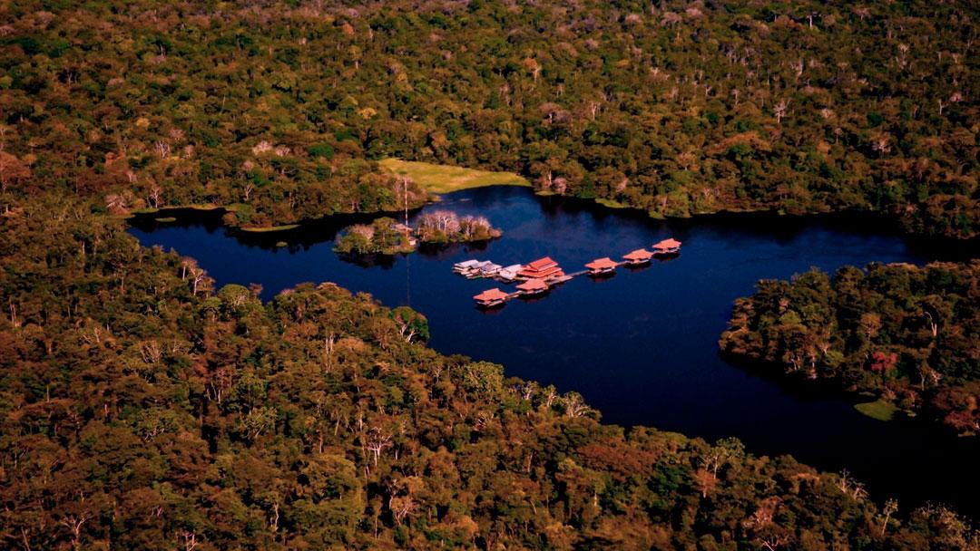 Conheça o Instituto Mamirauá e a Pousada Uacari, no Amazonas