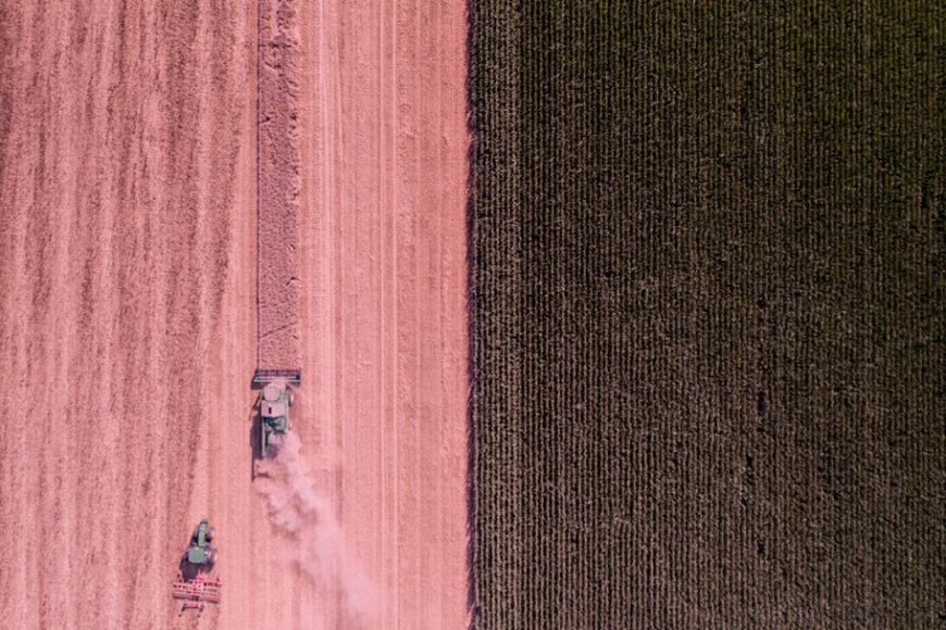 cidade-agricola-neutra-carbono-hungria-inovasocial-inovacao-social-destaque