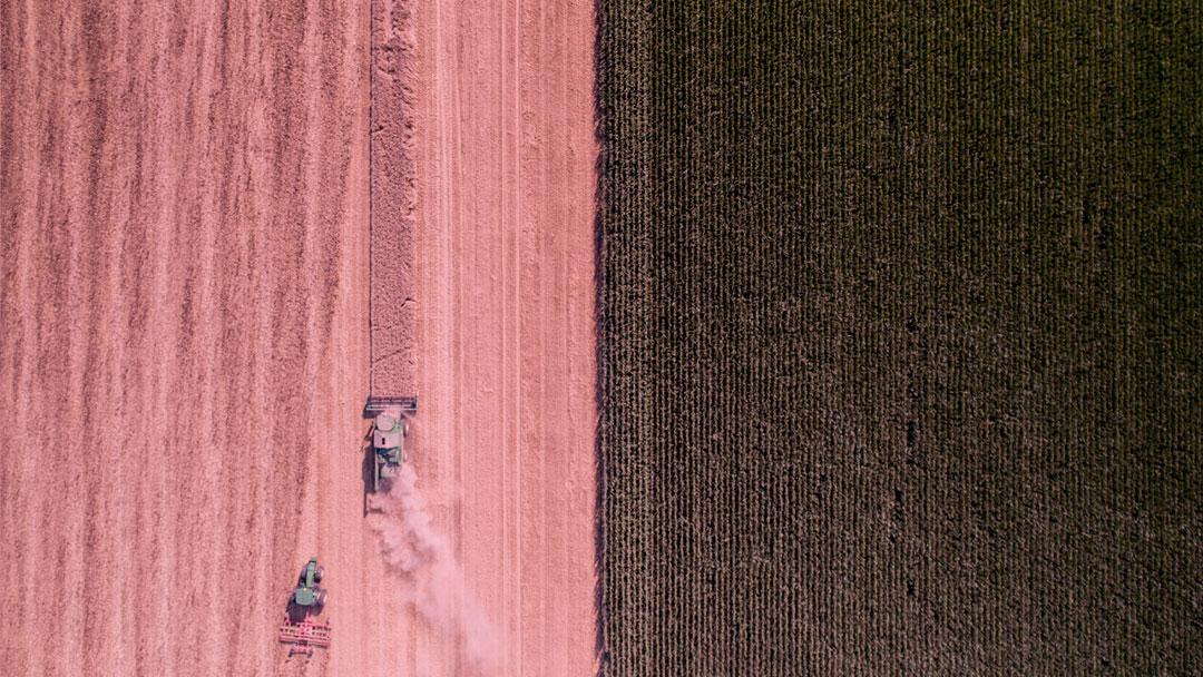 Hungria investirá mais de R$ 4 bilhões na criação de uma cidade agrícola neutra em carbono