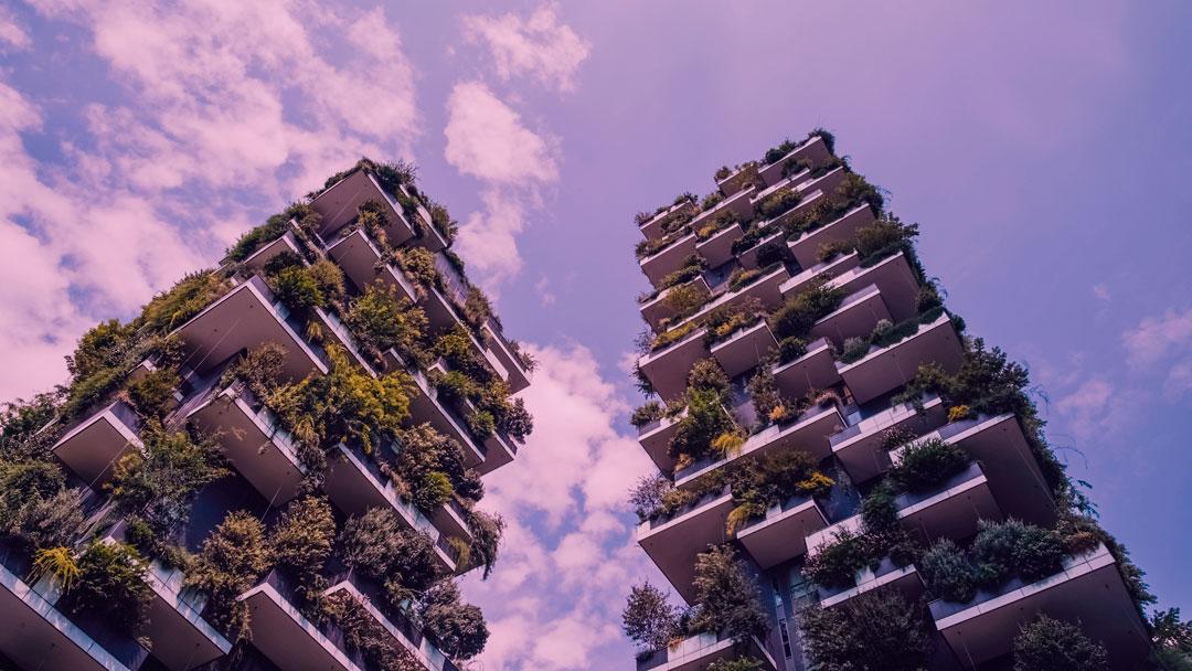 3 milhões de árvores: Em breve, Milão terá mais árvores que pessoas
