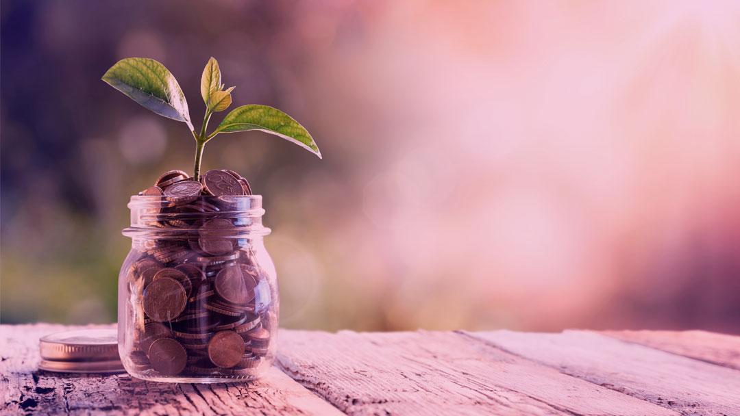 Parceria entre SITAWI e Instituto Sabin possibilita linha de crédito com juros baixos para organizações de impacto socioambiental