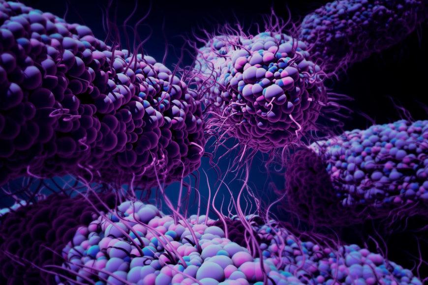 super-bacteria-plague-inovacao-social-inovasocial-destaque