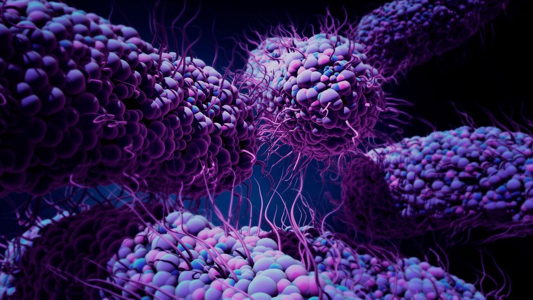 Superbactérias: Novos medicamentos e games educativos