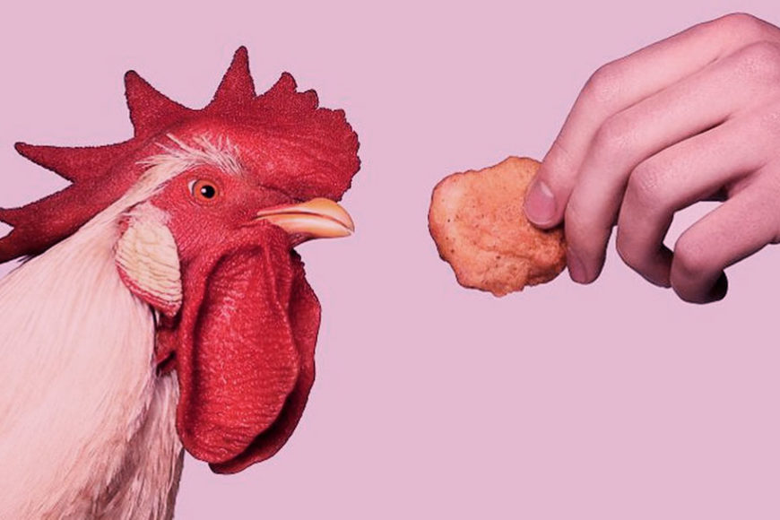 nuggs-empanado-frango-carne-plant-based-inovacao-social-inovasocial-destaque