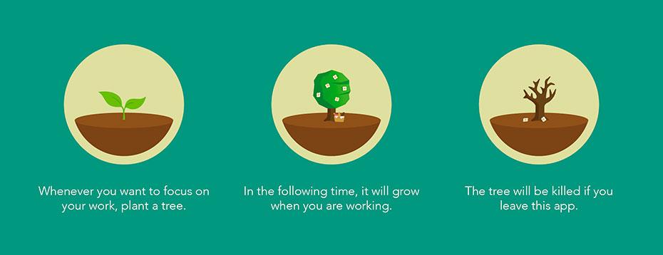 review-forest-app-foco-inovacao-social-inovasocial-01