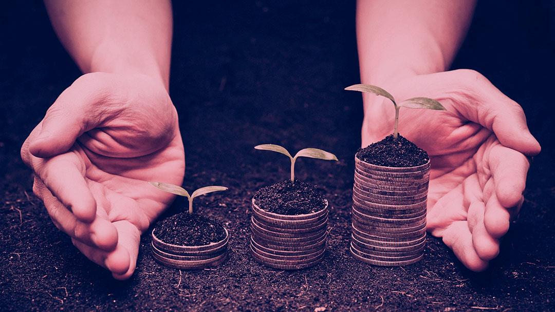 TED Talks: Como investir em impacto social