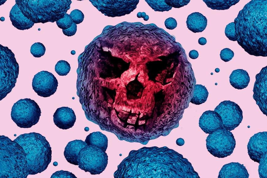 brasil-pesquisa-superbacteria-inovacao-social-inovasocial-destaque