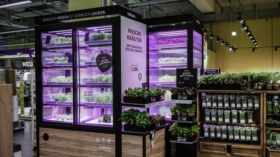 infarm-cultivo-verduras-supermercado-inovacao-social-inovasocial-01