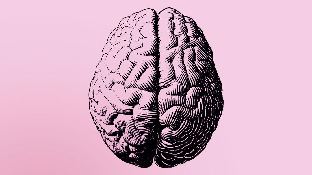 Pequeno implante neural controlado por smartphone pode trazer avanços nas pesquisas sobre doenças cerebrais