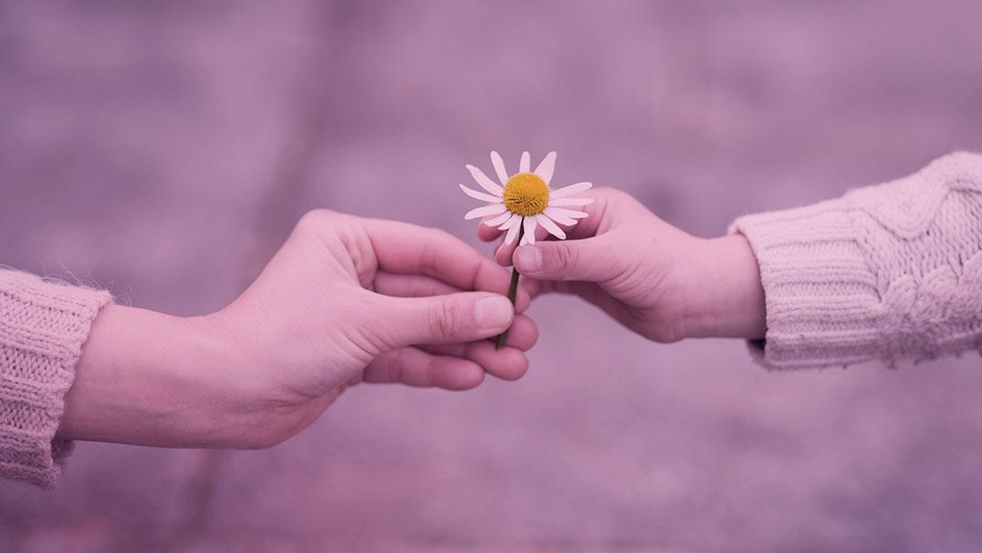 Lições especiais sobre generosidade