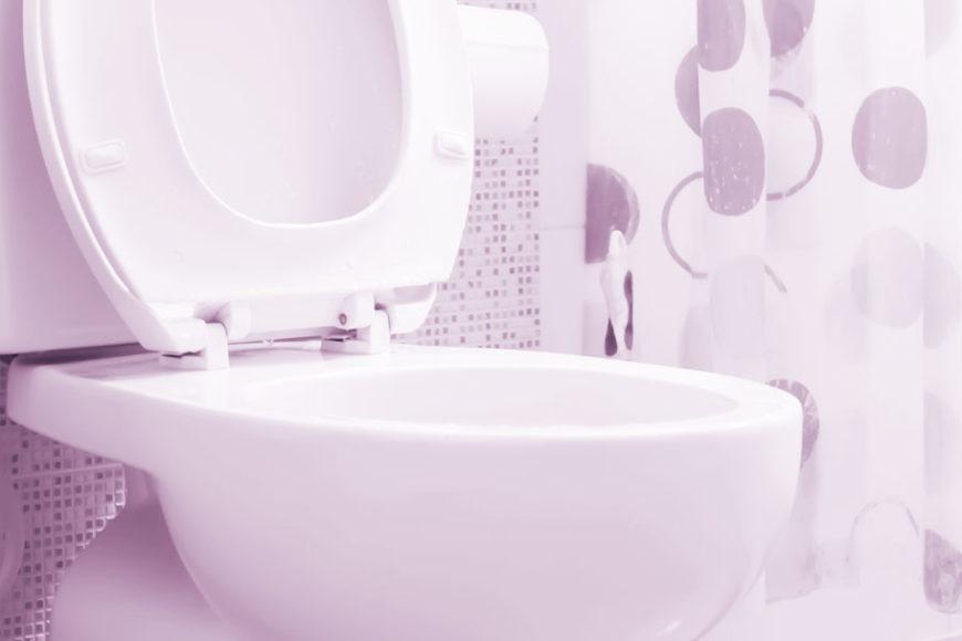 Banheiros Mudam Vidas anuncia vencedores de programa com foco em saneamento básico
