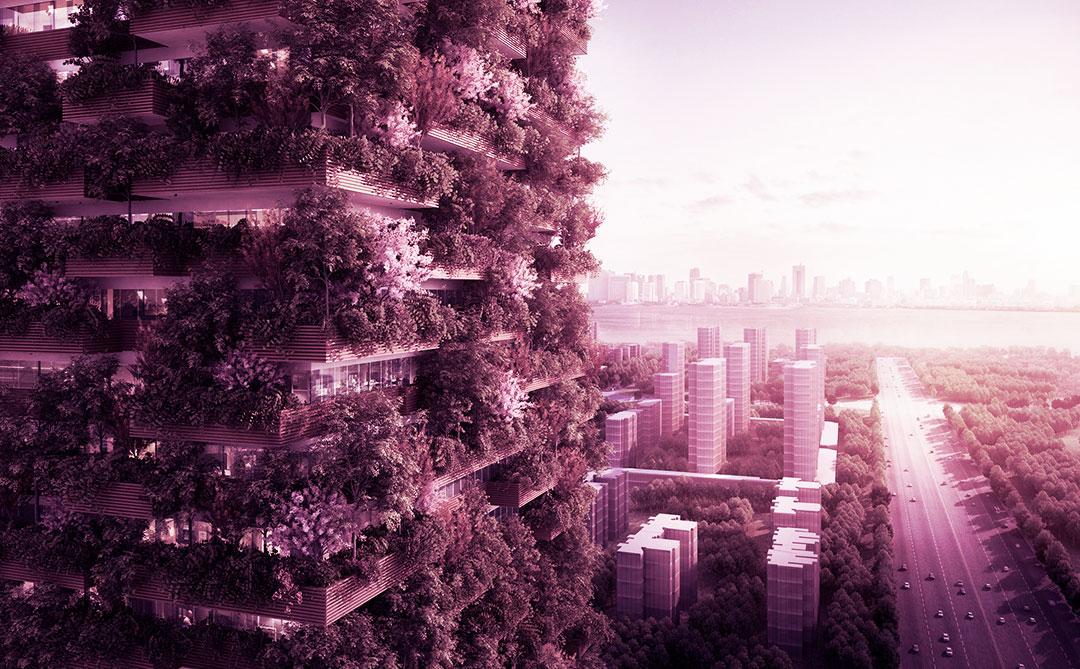 As florestas verticais mais exuberantes do mundo