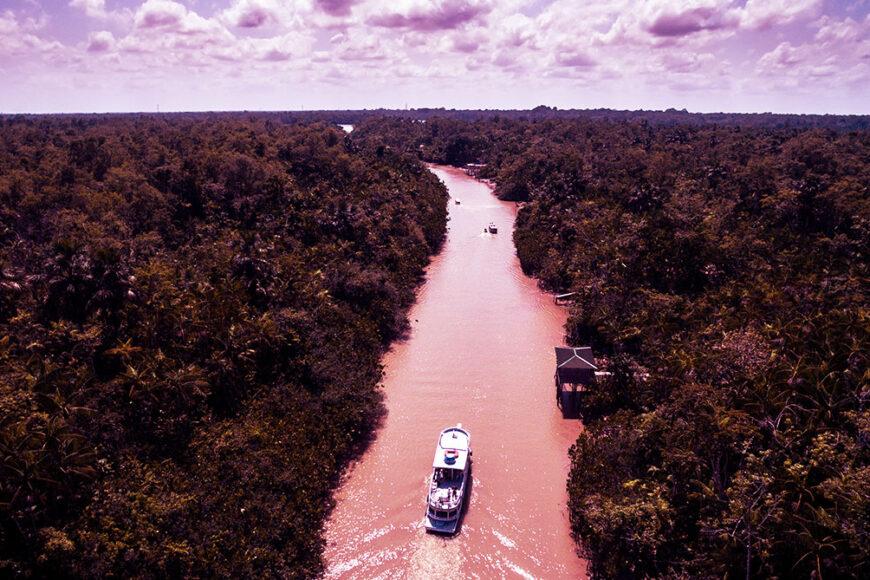 A importância da conservação da biodiversidade aquática na Amazônia