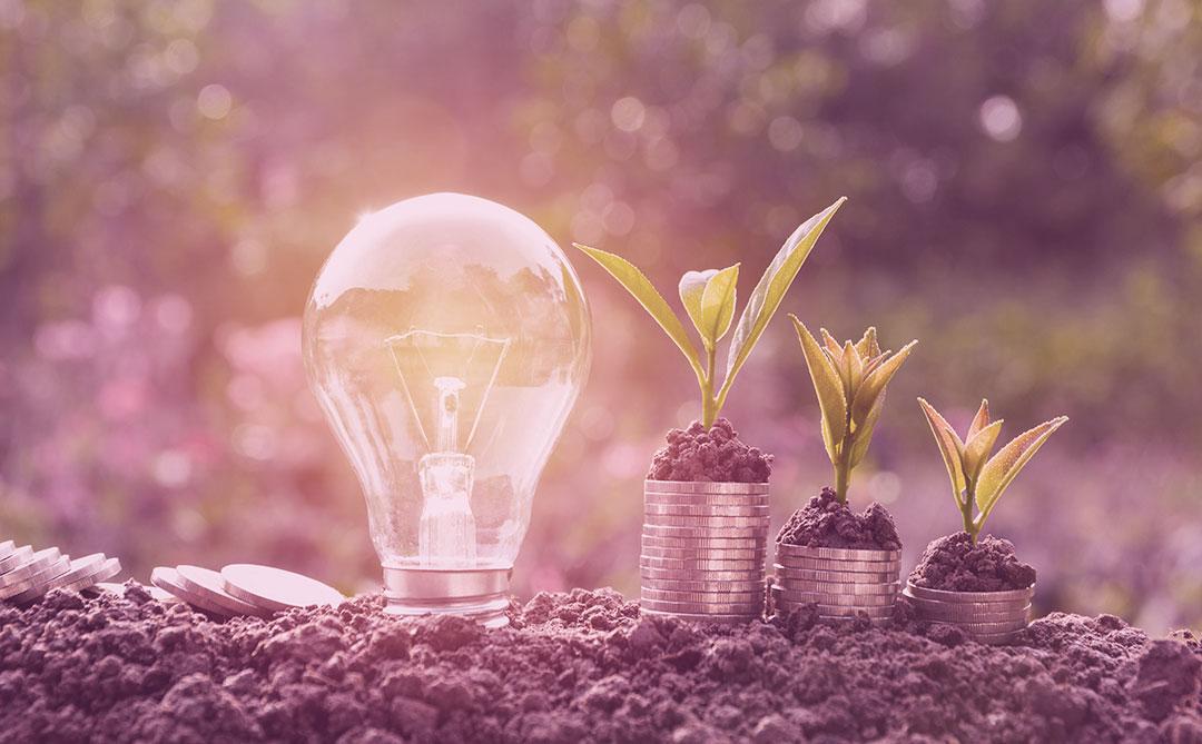 Impact Bank: uma fintech com propósito social e ambiental