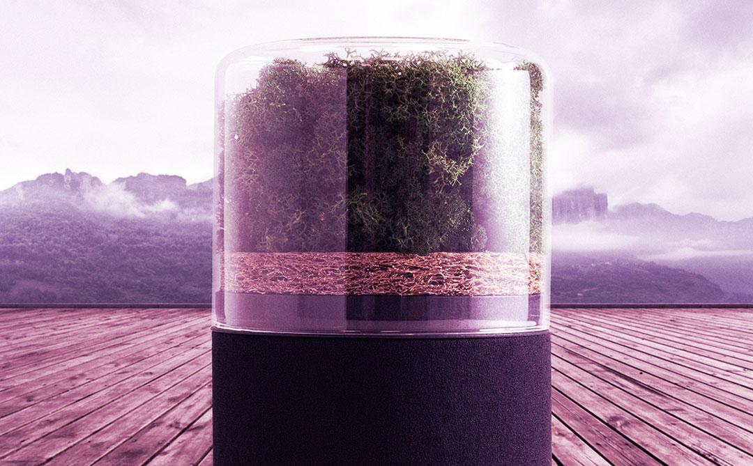 Briiv: A mini floresta inteligente que é um purificador de ar natural