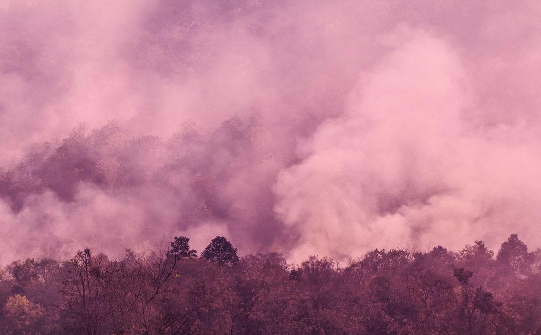 Iniciativa do Observatório do Clima debaterá as emissões de gases de efeito estufa na Região Norte