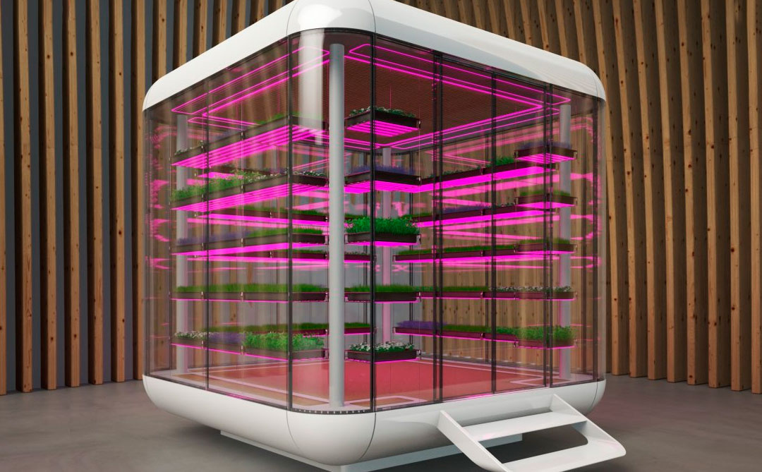 EmotionCube: Uma estufa climatizada produzida  para agricultura indoor
